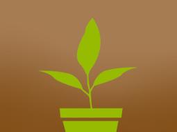 planttweet